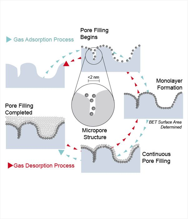 Micropore Structure Diagram