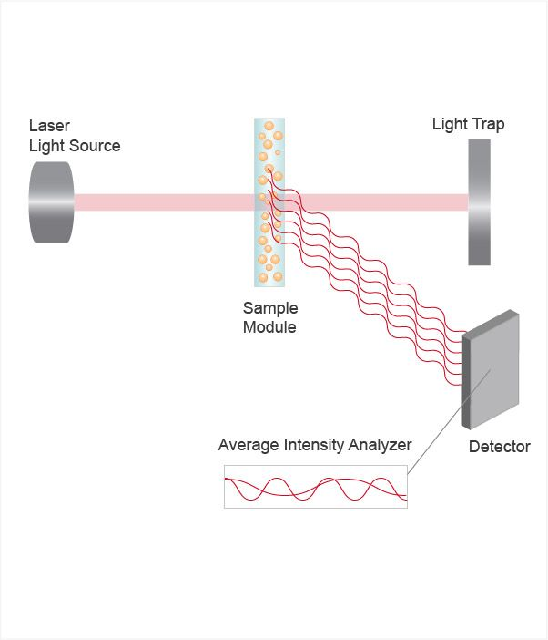 Dynamic Light Scattering (DLS) Diagram